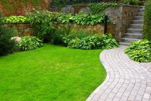 Gardening Services in West London
